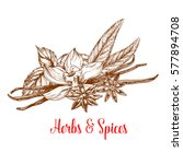 herbs and spices sketch poster. ... | Shutterstock .eps vector #577894708
