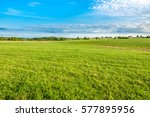 green field  spring background... | Shutterstock . vector #577895956