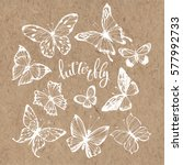 butterflies. vector set.... | Shutterstock .eps vector #577992733