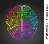 colorful vector of human brain. ...   Shutterstock .eps vector #578011360