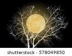 full moon and dry tree invert... | Shutterstock . vector #578049850