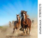 Two Wild Chestnut Horses...