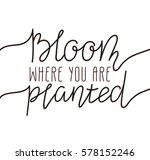 hand written lettering   bloom... | Shutterstock .eps vector #578152246