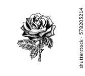 Vector Of Rose Black And White...