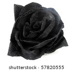 artificial black rose | Shutterstock . vector #57820555