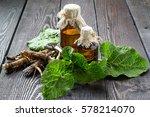 medicinal plant burdock ...   Shutterstock . vector #578214070