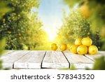 lemon fruits  | Shutterstock . vector #578343520