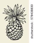 pineapplefruit. hand drawn