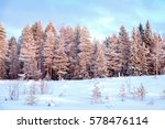 beautiful winter landscape with ... | Shutterstock . vector #578476114