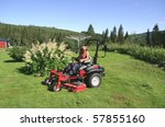 Man on riding mower with handlebar steering - stock photo