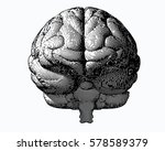 monochrome engraving brain... | Shutterstock .eps vector #578589379