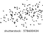 flock of birds silhouette.... | Shutterstock .eps vector #578600434