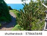narrow mountain footpath....