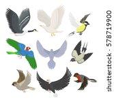 set of different flying birds... | Shutterstock .eps vector #578719900