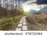 sunset in the woods corridor | Shutterstock . vector #578722483