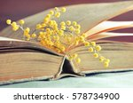spring background   old book... | Shutterstock . vector #578734900