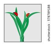 Ladybug On Green Grass In Ligh...