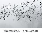 a flock of crows flying above... | Shutterstock . vector #578862658