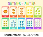 colourful number cards learning ...