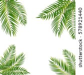 beautifil palm tree leaf ... | Shutterstock .eps vector #578921440