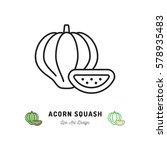 acorn squash icon vegetables... | Shutterstock .eps vector #578935483