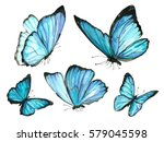 Stock photo a set of blue watercolor butterfly 579045598