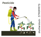 Farmer Sprays Pesticide. Vecto...