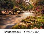 montella | Shutterstock . vector #579149164