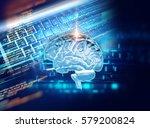 3d rendering of human  brain on ... | Shutterstock . vector #579200824