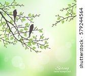 realistic vector silhouette... | Shutterstock .eps vector #579244564