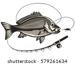 red snapper with rods and ocean ... | Shutterstock .eps vector #579261634
