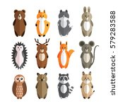 Vector Set Of Forest Animals....