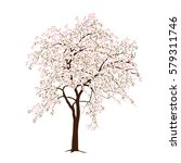 the blossoming apple tree in... | Shutterstock .eps vector #579311746