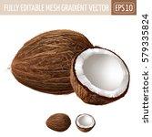 coconut on white background.... | Shutterstock .eps vector #579335824