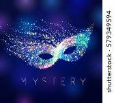 Mystery Celebrating Vector Mas...
