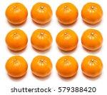 satsuma orange | Shutterstock . vector #579388420