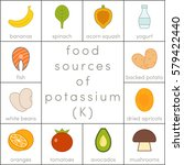 food sources of potassium ... | Shutterstock .eps vector #579422440