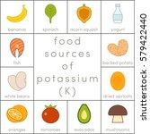 food sources of potassium ... | Shutterstock .eps vector #579422440