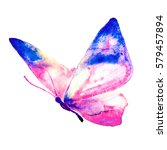 butterfly watercolor  isolated... | Shutterstock . vector #579457894