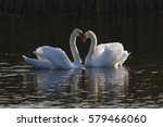 """""""shape of emotion""""   a pair of... 