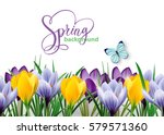 seamless horizontal border with ... | Shutterstock .eps vector #579571360