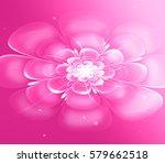 a flickering flower in the...   Shutterstock . vector #579662518