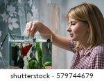 Young Woman Feeding Beta Fish...