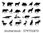large set of silhouettes of... | Shutterstock .eps vector #579751873