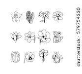 set of 12 flowers | Shutterstock .eps vector #579754330