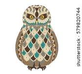 vector illustration of the owl  ... | Shutterstock .eps vector #579820744