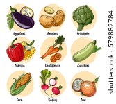 set of drawn colored vegetables.... | Shutterstock .eps vector #579882784