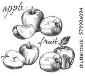 apple fruit set hand drawn... | Shutterstock .eps vector #579906094