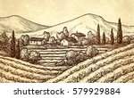 hand drawn vineyard landscape... | Shutterstock .eps vector #579929884