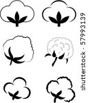 cotton  gossypium . | Shutterstock .eps vector #57993139